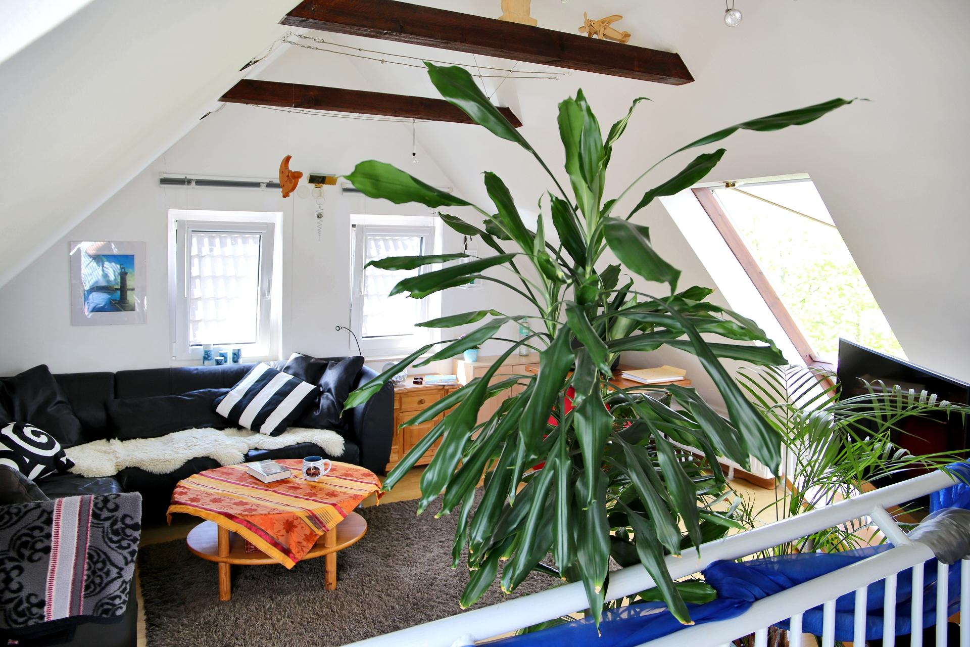 7.Wohnzimmer